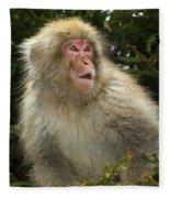 Japanese Macaque Fleece Blanket