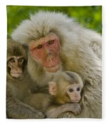 Snow Monkeys, Japan Fleece Blanket