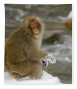 Japanese Macaque Fleece Blanket