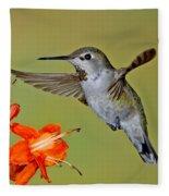 Annas Hummingbird Fleece Blanket