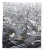 Flock Of Common Crane  Fleece Blanket