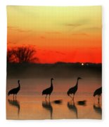 A General View Of The National Park Fleece Blanket