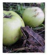 3 Apples And A Frog Fleece Blanket