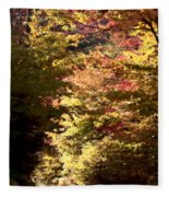 Autumn Colors And Road  Fleece Blanket
