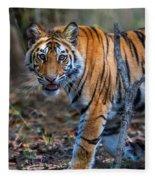 Bengal Tiger Panthera Tigris Tigris Fleece Blanket