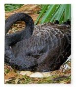 Black Swan At Nest Fleece Blanket