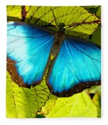 Blue Morpho Butterfly Fleece Blanket