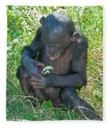 Bonobo Baby Fleece Blanket