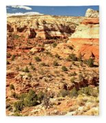 Calf Creek Falls Canyon Fleece Blanket