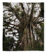 Cathedral Fig Tree Fleece Blanket