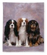Cavalier King Charles Spaniels Fleece Blanket