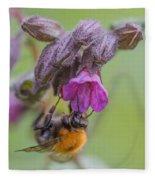 Common Carder Bee Fleece Blanket