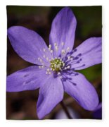 Common Hepatica Fleece Blanket