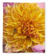 Dahlia Named Lambada Fleece Blanket