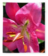 Dwarf Oriental Lily Named Farolito Fleece Blanket