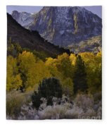 Eastern Sierras In Autumn Fleece Blanket