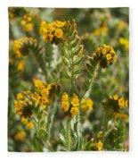 Fiddleneck Flowers Fleece Blanket