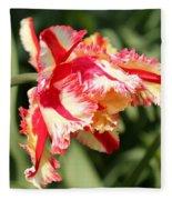 Flaming Parrot Tulip Fleece Blanket