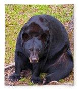 Florida Black Bear Fleece Blanket
