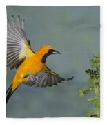 Hooded Oriole Fleece Blanket