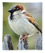 House Sparrow Fleece Blanket
