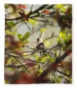 Hummingbird In Spring Fleece Blanket