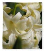 Hyacinth Named City Of Haarlem Fleece Blanket