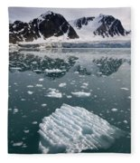 Icebergs Near The Monaco Glacier Fleece Blanket