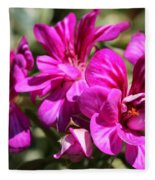 Ivy Geranium Named Contessa Purple Bicolor Fleece Blanket