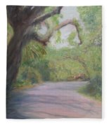 Kingsley Plantation Road Fleece Blanket