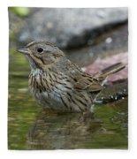 Lincolns Sparrow Fleece Blanket