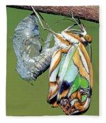 Malachite Butterfly Metamorphosis Fleece Blanket