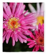 Marguerite Daisy Named Summer Song Rose Fleece Blanket