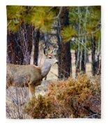 Mule Deer Fleece Blanket