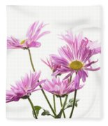 Mums Flowers Against White Background Fleece Blanket