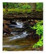 Natural Bridge Fleece Blanket