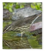 Northern Waterthrush Fleece Blanket