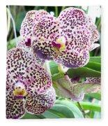 Orchid Fleece Blanket