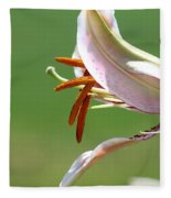 Oriental Lily Named Tiger Edition Fleece Blanket