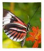 Piano Key Butterfly Fleece Blanket
