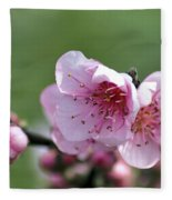 Pink Blossom Fleece Blanket