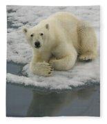 Polar Bear Resting On Ice Fleece Blanket