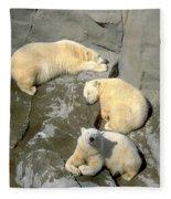 3 Polars Fleece Blanket
