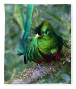 Quetzal Fleece Blanket