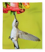Ruby-throated Hummingbird Female Fleece Blanket