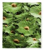 Russian Silverberry Leaf Sem Fleece Blanket