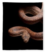 Savu Python On Tree Branch Fleece Blanket