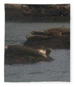Seals Series 2  Fleece Blanket