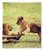 Small Lion Cubs Playing. Tanzania Fleece Blanket