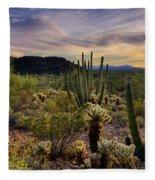 Sonoran Desert Sunset  Fleece Blanket